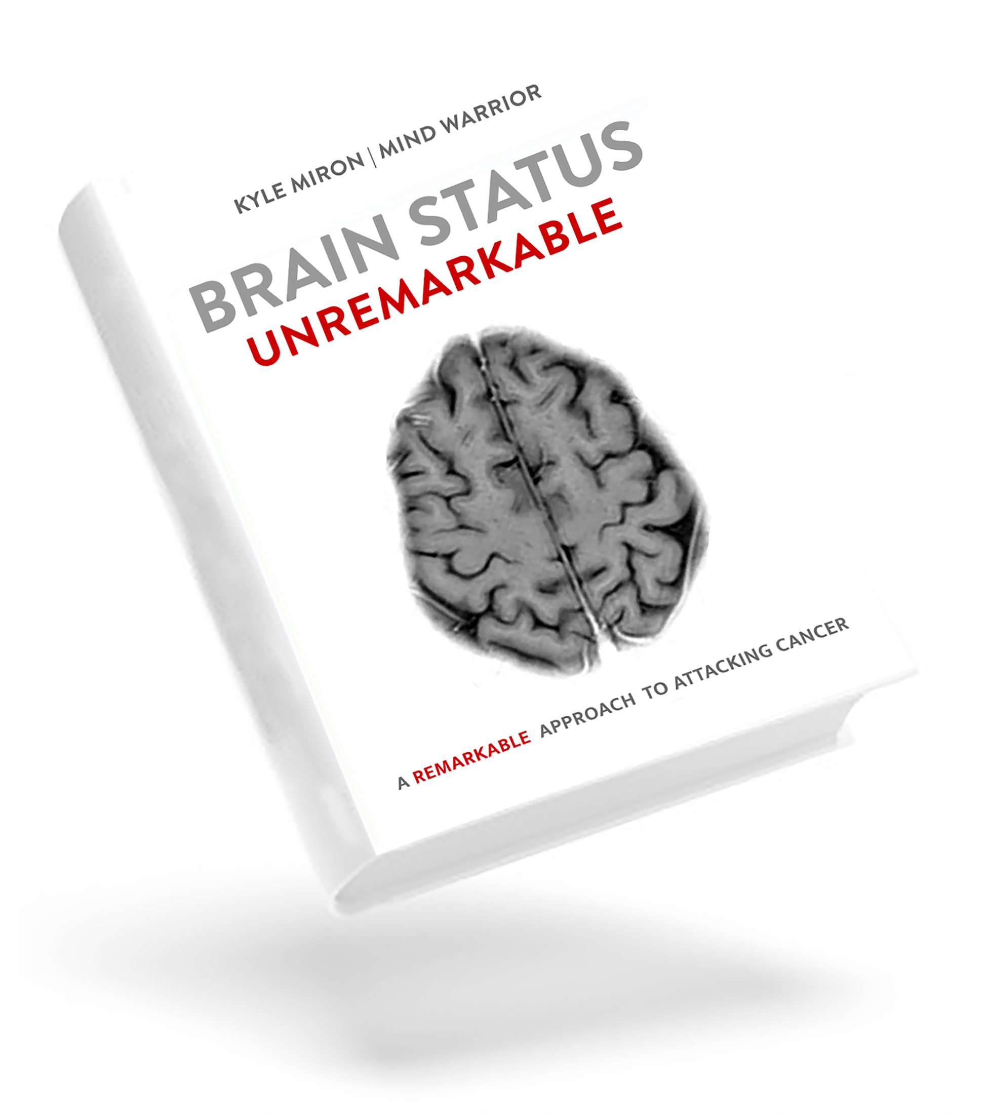 brain-stem-book-graphic